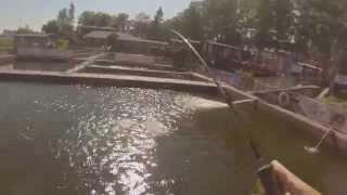 рыбалка крестовский остров санкт петербург ресторан русская рыбалка(рыбалка крестовский остров санкт-петербург ресторан русская рыбалка., 2015-07-07T07:55:02.000Z)