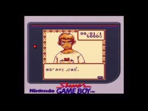 ゲーム機種:ゲームボーイ(Game Boy) ゲームソフト:ハムスター倶楽部2 メーカー:ジョルダン 年式:2000年 ジャンル:育成.