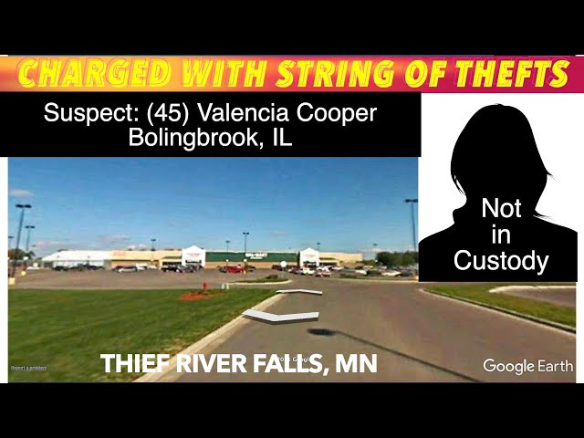 Illinois Woman Charged With String Of Thefts From Thief River Walmart