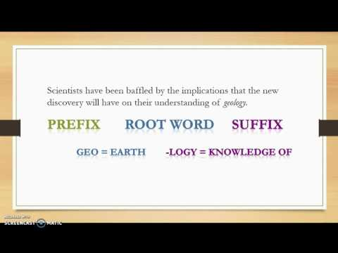 Vocabulary Lesson 2 Greek and Latin Roots