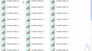 """Scratch Loops Collection """"Scratch History"""""""