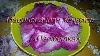 Домашняя маринованная капуста пелюстка