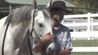 Horse worming made easy with Mike Hughes, Auburn California