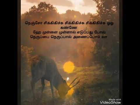 Rhythm - Ayyo Pathikichu Song Lyrics in Tamil