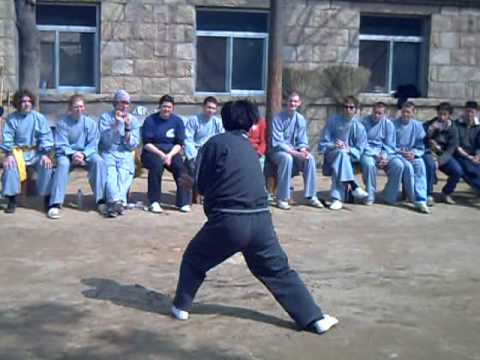 Master Chen Fusheng freestyling some Pigua