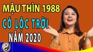 Xem Tử Vi Tuổi Mậu Thìn 1988 Năm 2020 Được Lộc Trời Cho Giàu Sang Phú Quý Nếu Biết Điều Này
