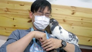 Kissed by the Cutest Bunny in the World, at the Rabbit Cafe!