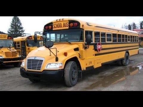 2009 Blue Bird Vision 71 Passenger School Bus For Sale