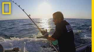Catch of the Week - Hooked on a Monstah | Wicked Tuna