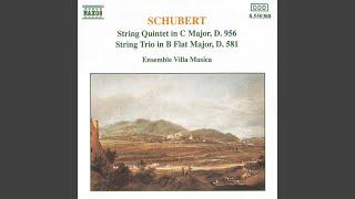 String Trio in B-Flat Major, D. 581: II. Andante