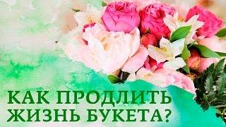 видео как оживить розы в вазе