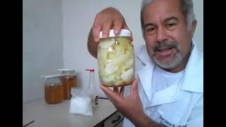 Cebola, mel e vinagre de maçã. Nova versão!