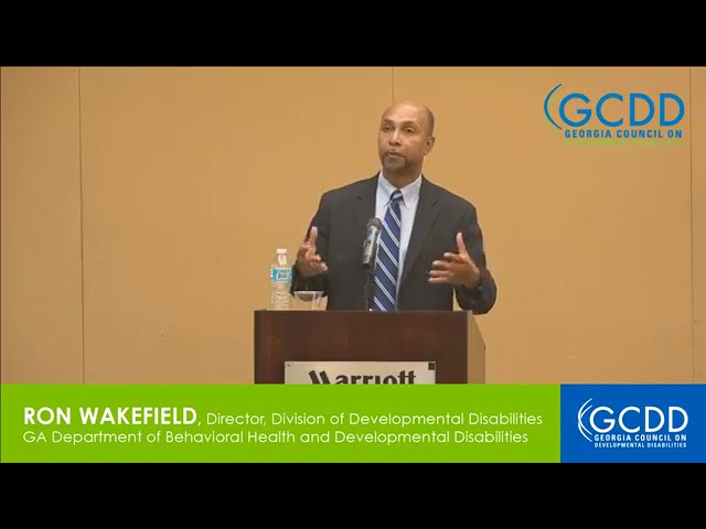 Ron Wakefield at GCDD Council Meeting, July 2017 (Part 2)