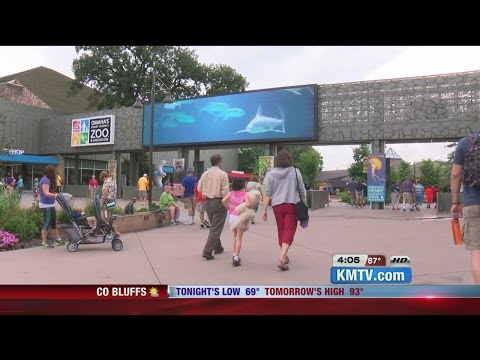 Omaha's Henry Doorly Zoo celebrates millionth visitor