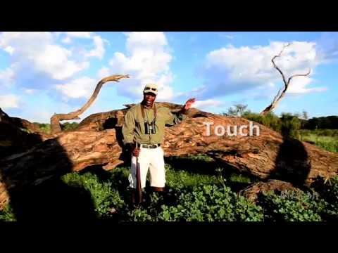 Launching the Super Sensory Safari - Mana Pools National Park, Zimbabwe