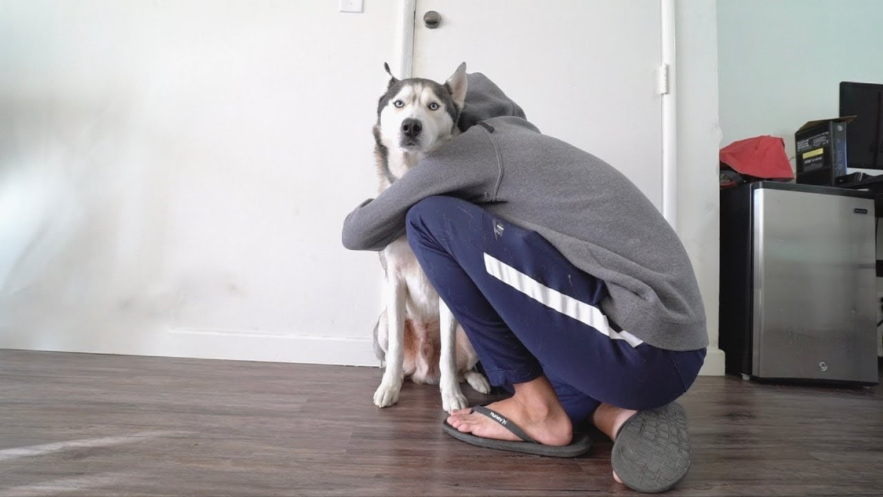 Hugging my dog for too long..