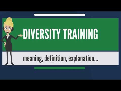 What is DIVERSITY TRAINING? What does DIVERSITY TRAINING mean? DIVERSITY TRAINING meaning