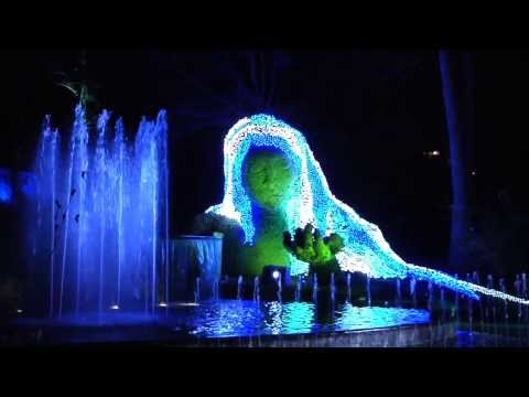 Over 1 Million Lights: Garden Lights Holiday Nights Atlanta Botanical Garden