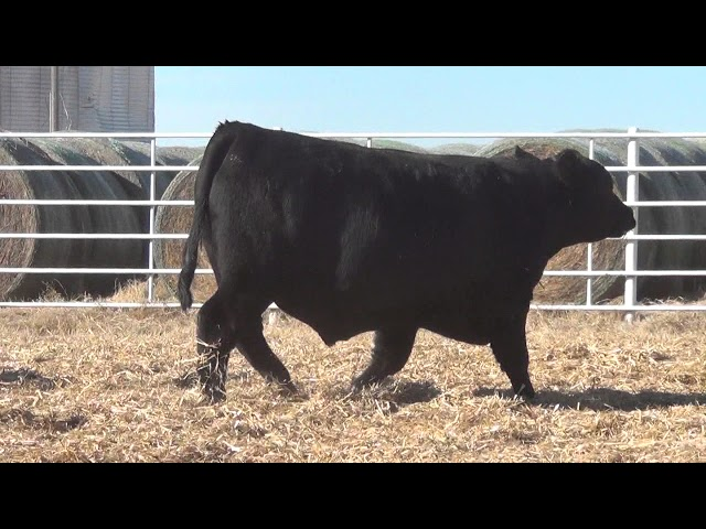 Express Ranches Lot 371
