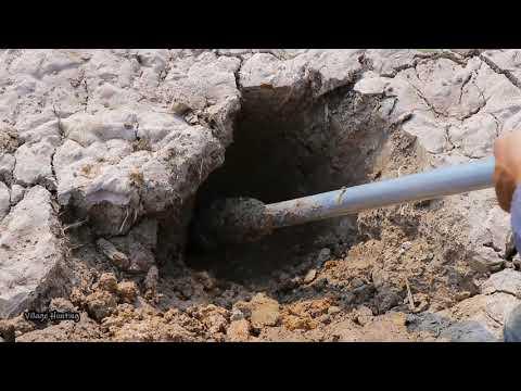 AMAZING FISHING VIDEO 2020!Dry Season Catching A Lot Of Fish Underground By Village Hunter