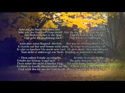 Autumn From The Seasons - Joseph Haydn