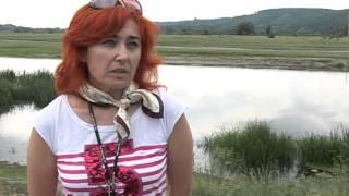 Работники библиотеки белгородских Валуек провели акцию «Река Оскол -- не свалка»