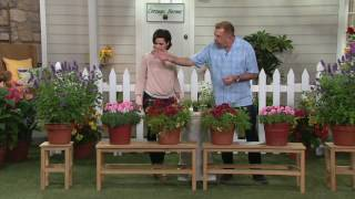 cottage farms 6 pc water savers garden collection on qvc