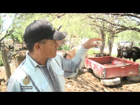 Mexico declares major natural disaster