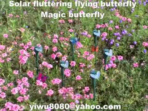 Solar fluttering flying butterfly/A magic butterfly for goden decoration