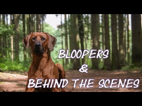Bloopers & behind the scenes | Kriss, Hubby and Sára