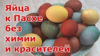 видео Как покрасить яйца к Пасхе?