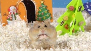 Day 2: O Christmas Tree - Cute Hamsters: 12 Days of Christmas