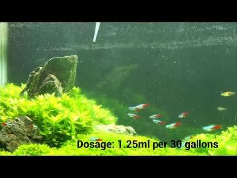 Nualgi Aquarium Initial Dosing - Aquathusiast.com