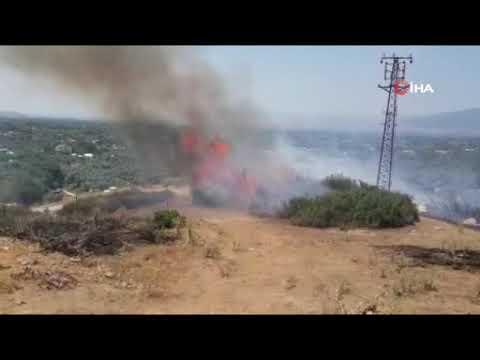 Tire'de yangın paniği