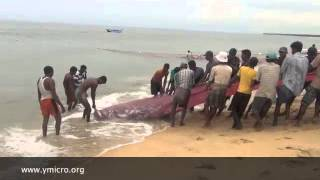 Ymicro - Fishing in Batticaloa