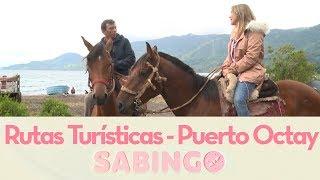 Ruta turística: Conocimos lo mejor de Puerto Octay - Sabingo