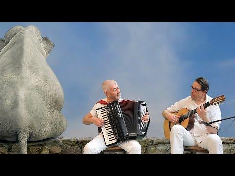FRENCH ACCORDION & GUITAR MUSIC - Funny elephants -Accordeon acordeon akkordeon fisarmonica guitarra