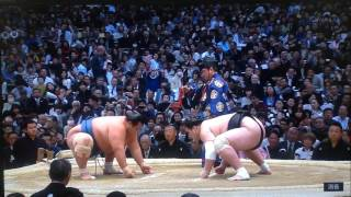Ozeki Terunofuji (12-1) wants to maintain his spot on top of the le...