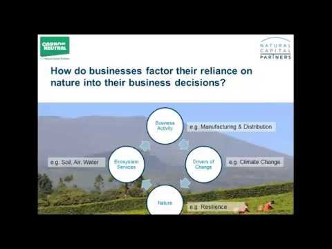 Webinar: What does natural capital mean for business? 18/11/15