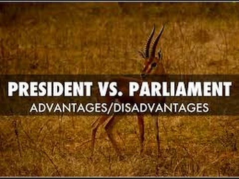 PARLIAMENTARY VS PRESIDENTIAL SYSTEM ( PROS AND COSNS ) , WH