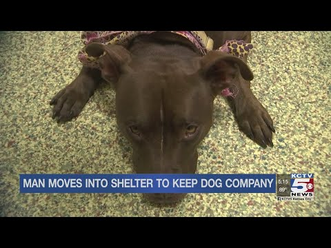 Pet Central - Man moves into animal shelter to keep a dog company