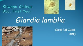 Zoology for Students: Giardia Lamblia