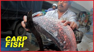 Thanks to you for watching Big Size Indian Major Carp Fish Cutting ...