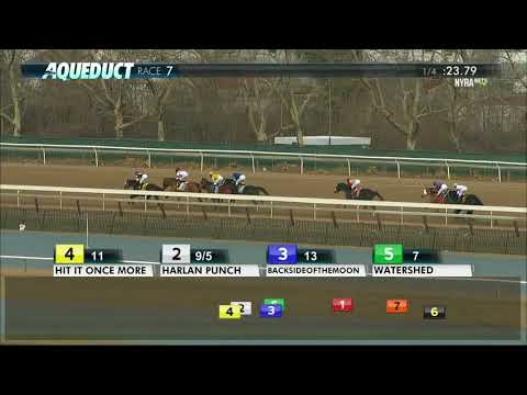 Harlan Punch  - 2018 Stymie Stakes