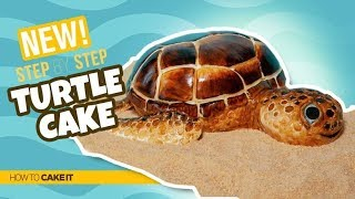 How To Make A TURTLE CAKE by Shannon Murphy | How To Cake It Step By Step