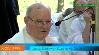XXXVI PPW - 2016-08-08 - kazanie ks. Orzecha w lesie za Dąbrową - o Sakramencie Namaszczenia Chorych