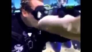 Самые опасные убийцы Ужасные нападения животных на людей Уникальные кадры Премьера 2014