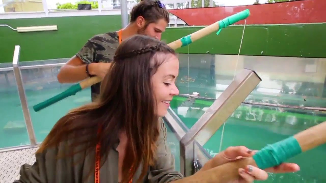 video Big Croc Feed VIP Experience