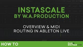 WA Production InstaScale First Look | MIDI Routing in Ableton Live Tutorial