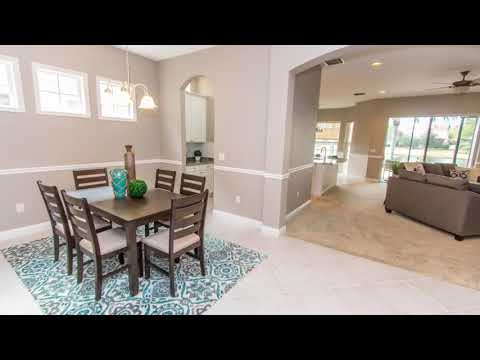 14640 Chatsworth Manor Tampa, FL 33626 - Trans States Realty